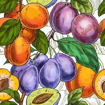 Abrikozen en pruimen naadloos patroon