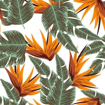 Abstract naadloos tropisch patroon met kleurrijke planten en bladeren op een witte achtergrond