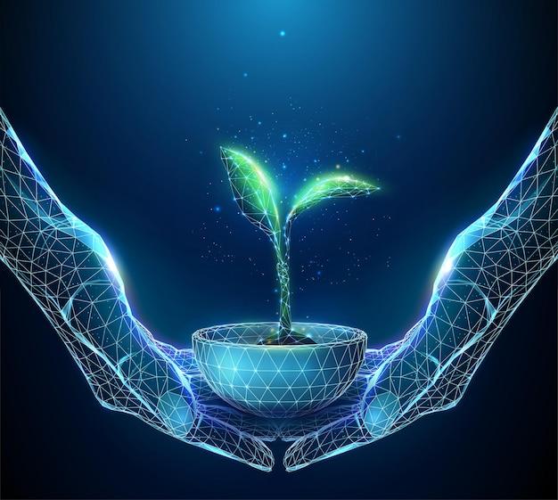Abstract paar handen met jonge groene plant in pot