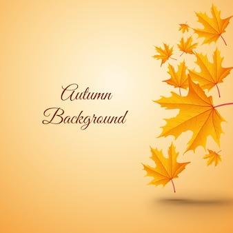 Abstracte achtergrond met bladeren