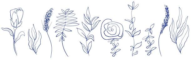 Abstracte botanische elementen voor ontwerp