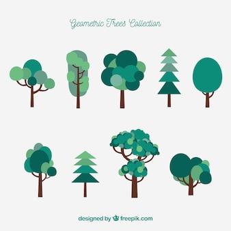 Abstracte geometrische bomen