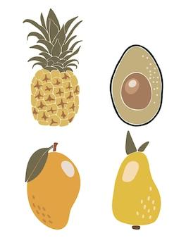 Abstracte tropische fruit set boho tropische elementen geïsoleerde vectorillustratie