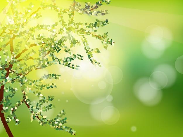 Abstracte voorjaar achtergrond. Premium Vector