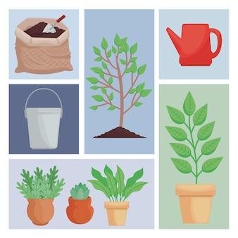 Acht plantpictogrammen