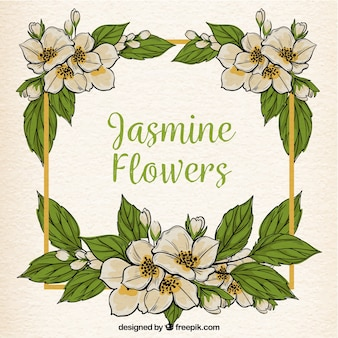 Achtergrond frame met jasmijn bloemen en met de hand getekende bladeren