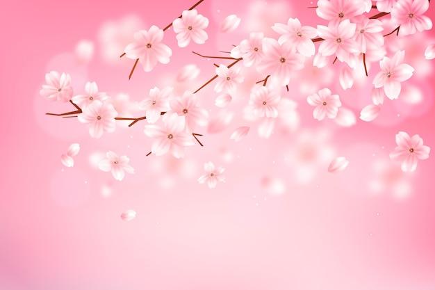 Achtergrond met kleurovergang sakura bloemtak