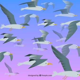 Achtergrond met vliegende zeemeeuwen