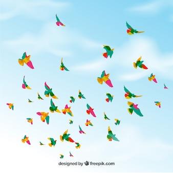 Achtergrond met vogels die in hemel vliegen