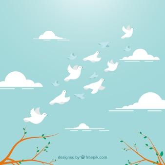 Achtergrond met witte vogels vliegen