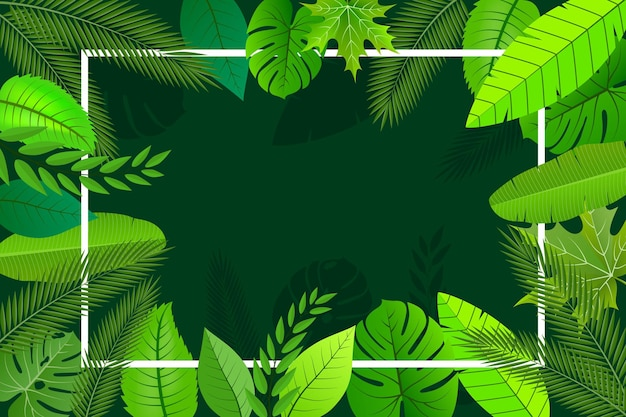 Achtergrond natuur bladeren ontwerp