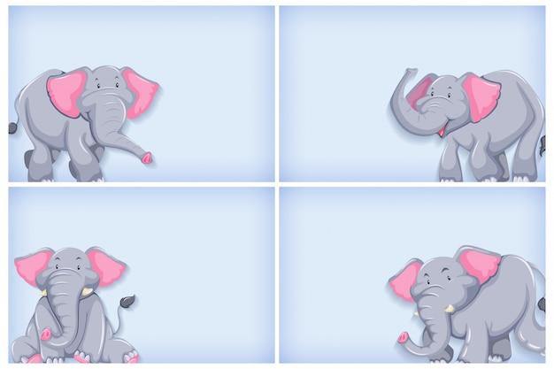 Achtergrond sjabloonontwerp met effen kleur en olifant