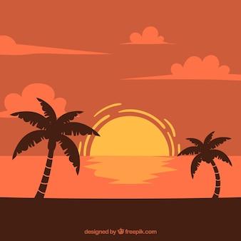 Achtergrond van het landschap bij zonsondergang met palmbomen
