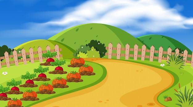 Achtergrond van landschap met groenten in tuin