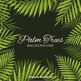 Achtergrond van palmbladeren