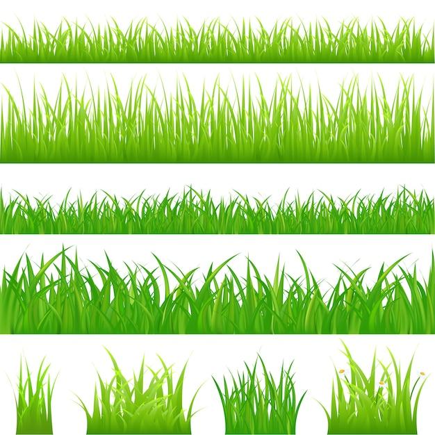 Achtergronden van groen gras en 4 plukjes gras, op wit