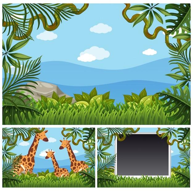 Achtergrondmalplaatje met giraffen in bos