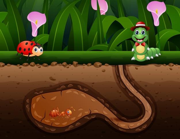 Achtergrondscène met insecten in de grond