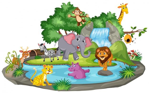 Achtergrondscène van vele dieren bij de waterval