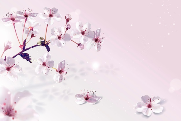 Adembenemende kersenbloesems achtergrond