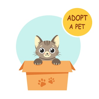 Adopteer een huisdier. leuk katje in de doos. in vlakke stijl.
