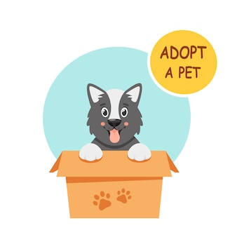 Adopteer een huisdier. schattige puppy in de doos. illustratie in vlakke stijl.