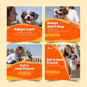 Adopteer een instagram-postsjabloon voor huisdieren