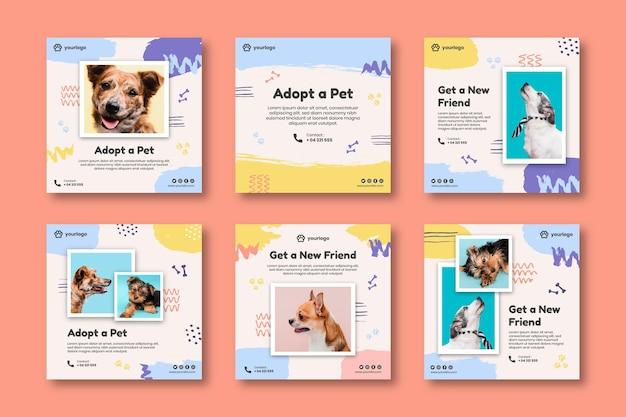 Adopteer een verzameling instagram-berichten voor huisdieren