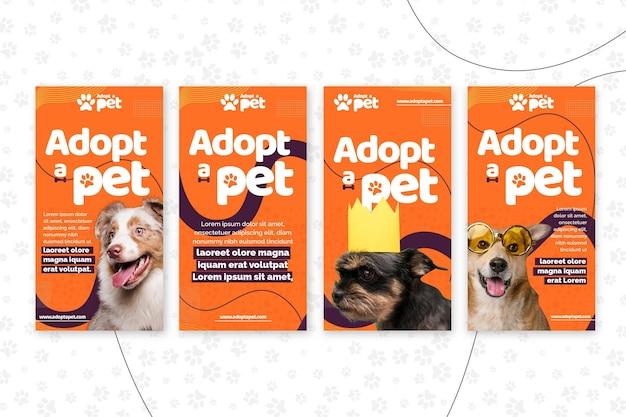 Adopteer een verzameling instagram-verhalen voor huisdieren