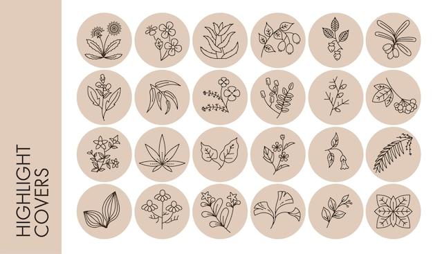 Afgeronde hoogtepunten covers met bloemen en kruiden, geïsoleerd gebladerte en ornamenten in cirkels. romantische eenvoudige decoratie, lente- of zomervibes. badges met bloesem en flora, vector in flat