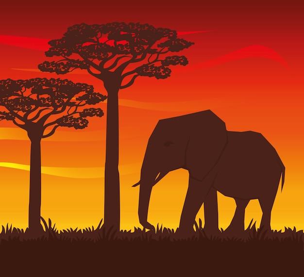 Afrika concept met pictogram ontwerp
