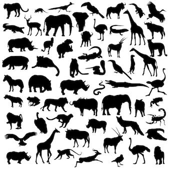 Afrika safari dieren wild leven silhouet illustraties