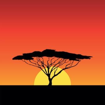 Afrika zonsondergang
