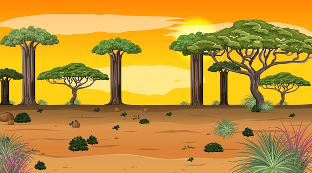 Afrikaans boslandschap bij zonsondergangscène met vele grote bomen