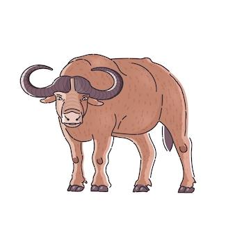 Afrikaanse buffalo illustratie