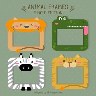 Afrikaanse dier frames