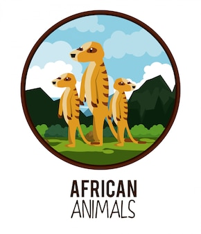 Afrikaanse dieren cartoon