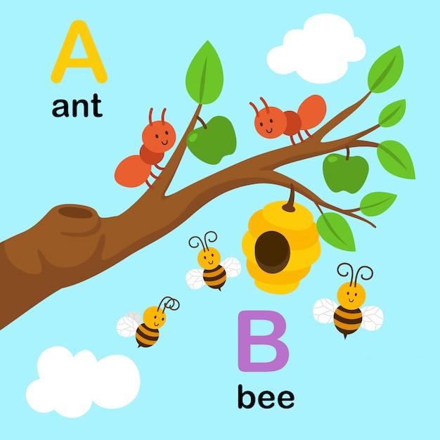 Alfabetletter a voor mier, b voor bij, illustratie