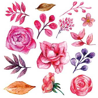 Alles over roze bloemen set aquarel
