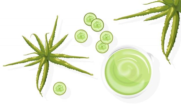 Aloë plant en plakjes komkommer