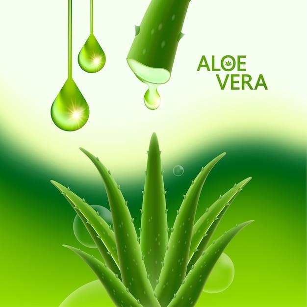 Aloë vera collageen en serum voor cosmetische huidverzorging.