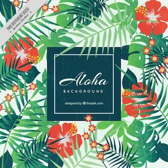Aloha achtergrond, floral stijl