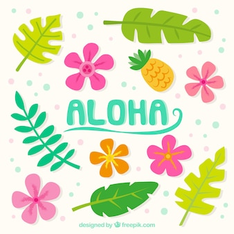 Aloha achtergrond met bloemen en bladeren