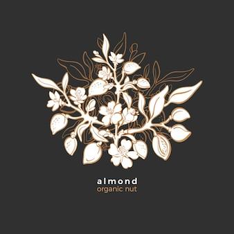 Amandel symbool art grafische illustratie biologische melk