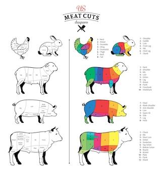 Amerikaans (vs) vlees snijdt diagrammen