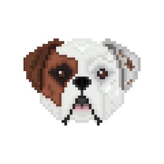 Amerikaanse bulldog hondenkop in pixel art-stijl