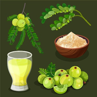 Amla fruit elementen instellen