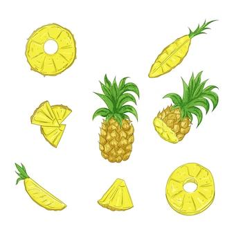 Ananas, hele en gesneden cartoon set.