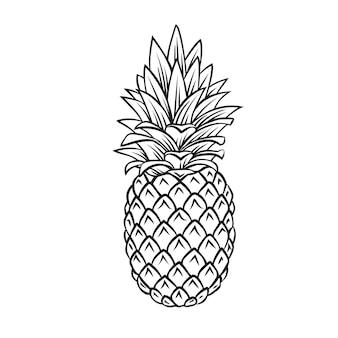 Ananas tropisch fruit overzicht pictogram, zwart-wit afbeelding tekenen. gezonde voeding, biologisch voedsel, vegetarisch product.