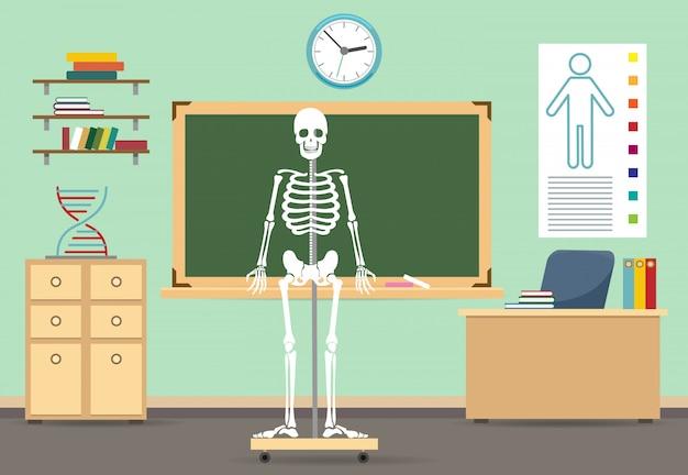 Anatomie klas interieur